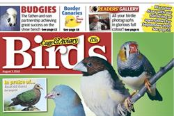 IPC offloads first niche title Cage & Aviary Birds