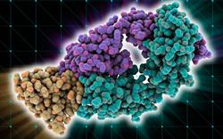 NICE approves drugs for NSCLC and multiple myeloma