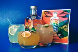 In pictures: Absolut hosts event to mark release of Absolut Mix