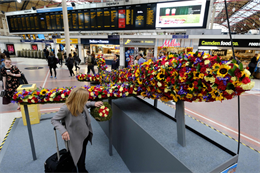 In pictures: Monarch's giant floral plane comes to London