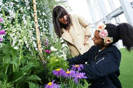 In pictures: Grow Wild launches highest English garden at View from The Shard