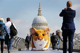 Event TV: Kwik Fit's giant hamster stunt