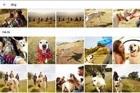 Google photos app among those to have fallen foul of algorithms