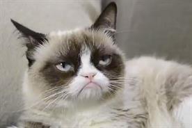 Grumpy Cat: stars in ad for Friskies