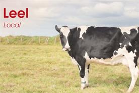 Kelly's of Cornwall offers Cornish vocabulary tips in new campaign