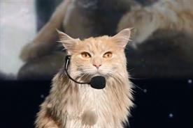 O2: cat stars as motivational speaker latest ad campaign instalment