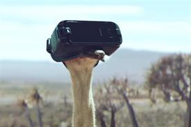 How an international collaboration helped launch a flightless bird