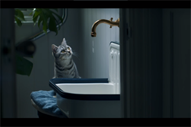 Whiskas campaign zones in on the curiosity of cats