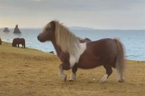 Three's pony and cats with thumbs top the cute Easter ad chart