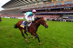 Ascot hires Antidote to build year-round appeal