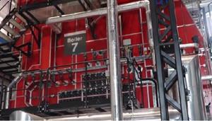 Healthcare company opens €8m biomass plant