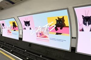 Tottenham Cat Road? Kickstarter campaign wants to replace tube ads with cat pics