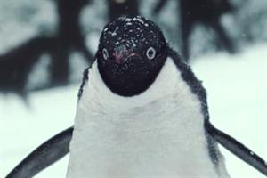 John Lewis' #Montythepenguin Christmas ad beats Sainsbury's WWI spot in 'likeability' stakes