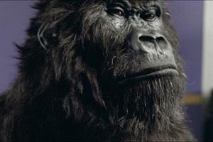 Cadbury's Gorilla is nation's favourite ad, while industry opts for Guinness' Surfer
