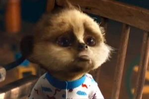 Top 10 ads of the week: Cute baby meerkat bests bolognese