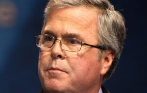 Bush campaign-in-waiting sets communications director
