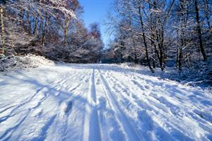 The snow saga continues: your stories