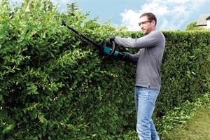Hedge trimmers - battery-powered models