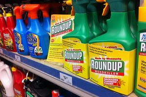 ECHA: Glyphosate does not cause cancer