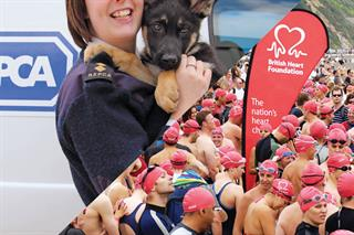 RSPCA wrongly disclosed up to 800,000 records, says Information Commissioner