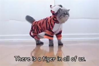 Greenpeace dresses up cats to help save tigers from extinction
