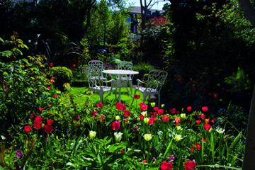 Dr Anne Pauleau interview: The GP gardener