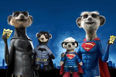 Comparethemarket.com's meerkats ditch Kidman for Batman and Superman