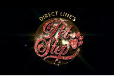 "Direct Line ""pet step"" by M&C Saatchi"