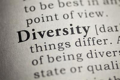 How do we define diversity?