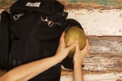 Vita Coco: ditch the coconuts in festival Vine