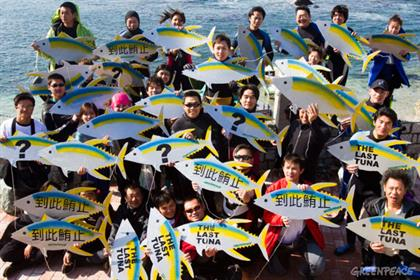 Greenpeace: Work Club will seek to raise awareness on over-fishing in Europe