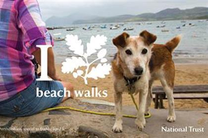 National Trust: 'I oakleaf' by 18 Feet & Rising