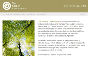 The Carbon Consultancy