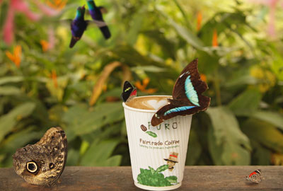The coffee supplier Miko has raised money for the protection of areas of rainforest in South America