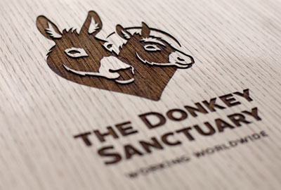 The Donkey Sanctuary's new branding