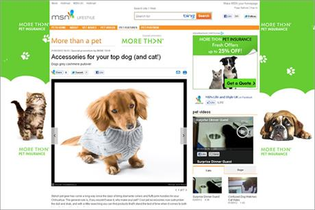 More Th>n to sponsor MSN pet portal