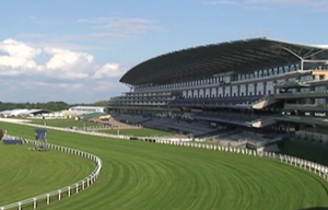 Behind the scenes at Royal Ascot