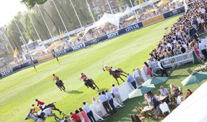 Rhubard to create packages for polo event