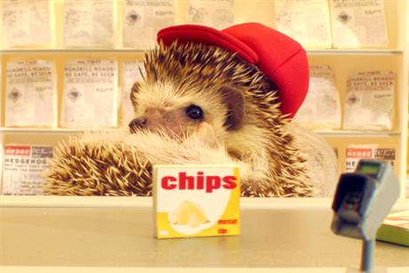 Lactofree 'listen up hedgehogs' by Wieden & Kennedy London