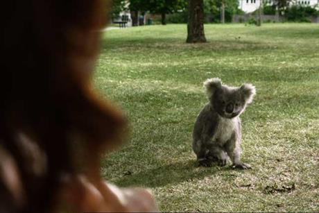 Specsavers 'koala' by Specsavers Creative