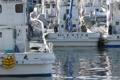 Territorial… Japan's fishing industry has been a powerful offshore wind opponent (pic:Shirokaan)