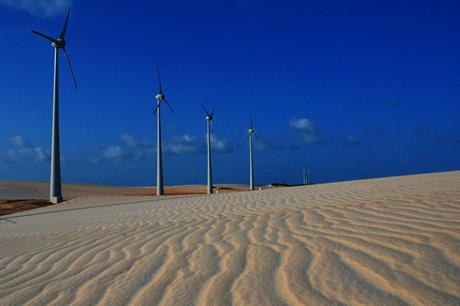 Pretty tough Building wind farms on sand dunes increases the need for monitoring (pic: Iberdrola)