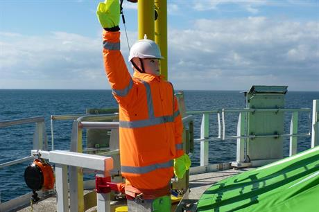 Scarecrow system provides 'astonishing' results offshore