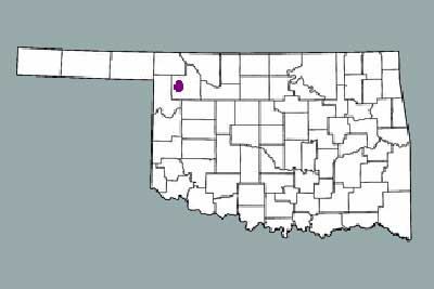 The wind farm will be outside Woodward City in northern Oklahoma