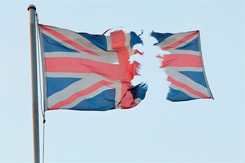 A survivor's guide to Brexit