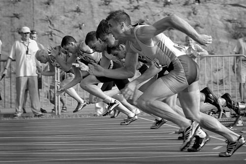 Which Olympic sport matches your small business style?