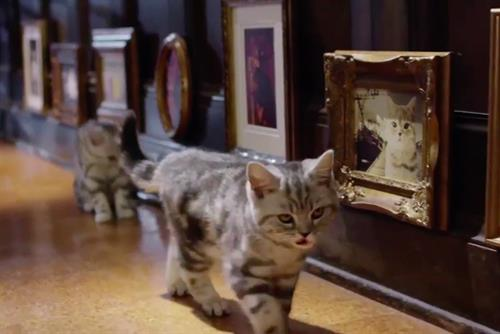 "Whiskas ""kitten kollege"" by Abbott Mead Vickers BBDO"