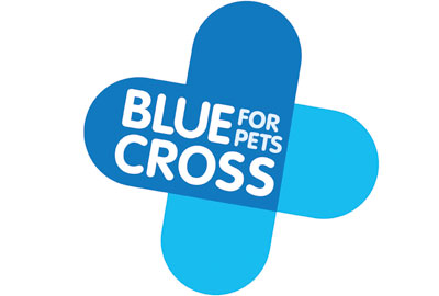 Blue Cross new branding