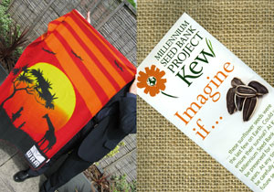 WRM Africa blanket (left), and Kew sunflower seeds