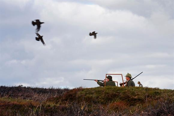 Shooting and conservation charity in the news